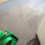 Professional Carpet, Upholstery & Hard Floor Cleaners, Leeds. carpet cleaning domestic cleaning