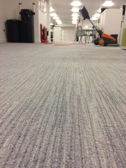 Professional Carpet & Upholstery Cleaning Experts Leeds